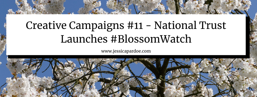 National Trust blossom watch campaign #BlossomWatch